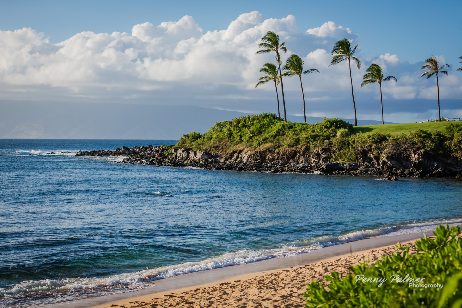 Pictures in Maui